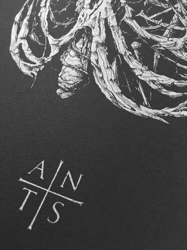 Antaeus Extase by Dehn Sora, silver ink on black paper, detail 3