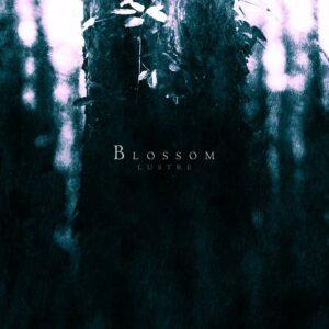 297-lustre-blossom-digicd-1
